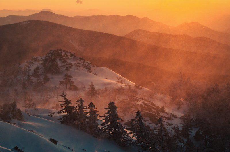 Метель, Пидан, зима, снег, вершина, ёлки, холод, камни, Приморский край Огненный рассветphoto preview