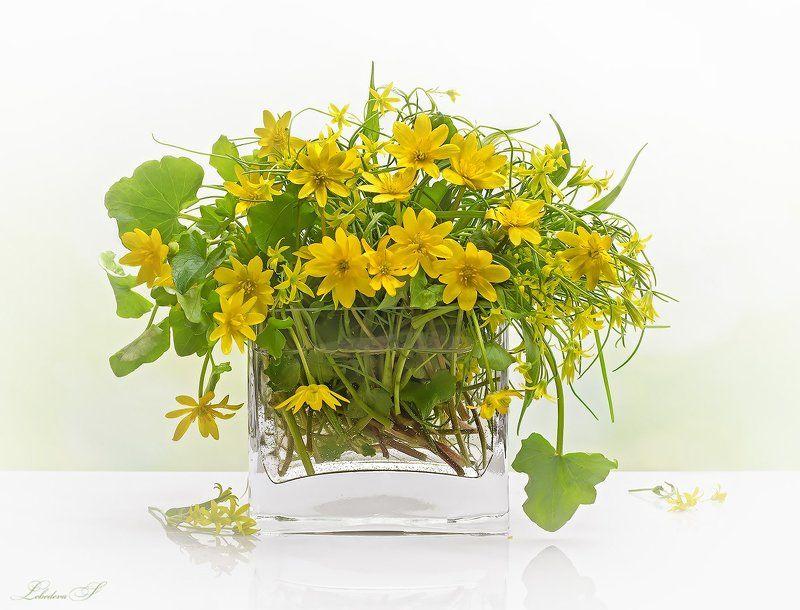 букет, весна, натюрморт, цветы Весенние цветыphoto preview