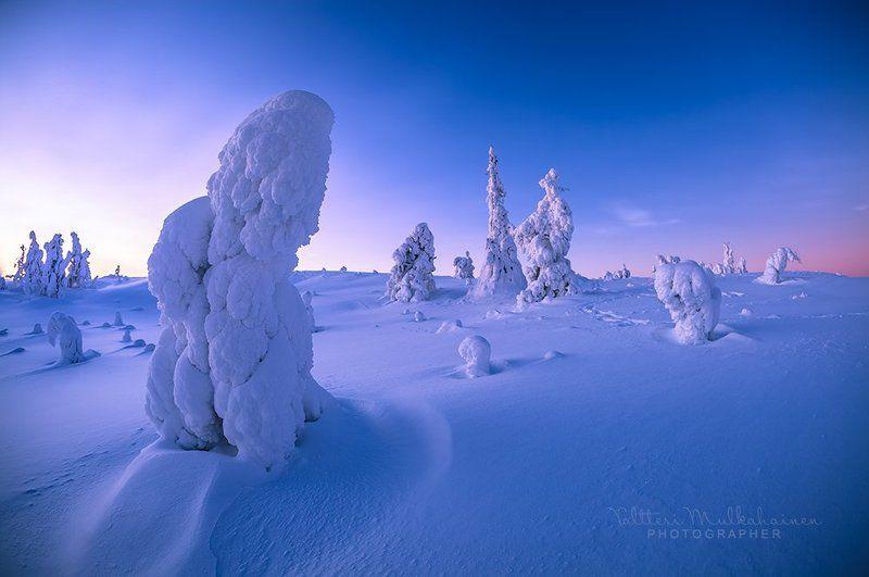 Рассвет в Лапландии ...photo preview