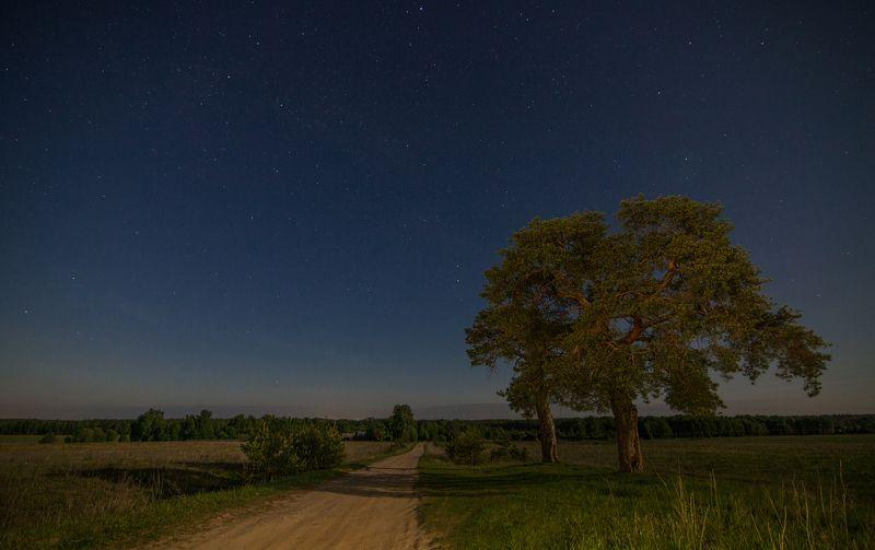 Звездная ночьphoto preview
