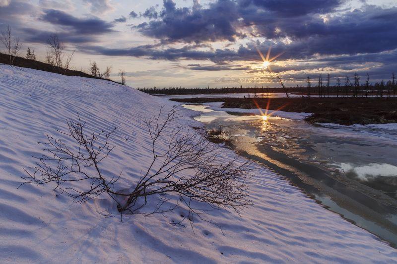 ямал, закат, пейзаж, арктика, тундра, весна, новыйуренгой, canon Весна в Арктикеphoto preview