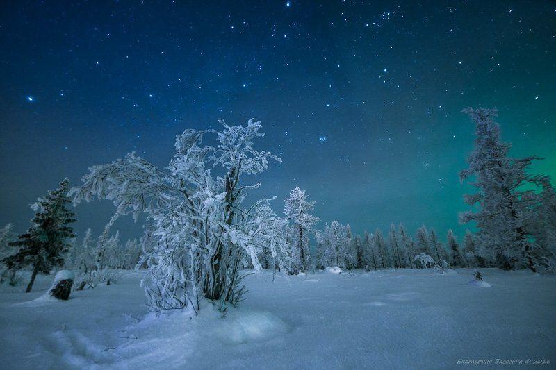 ямал Воспоминание о Ямальской зиме...photo preview