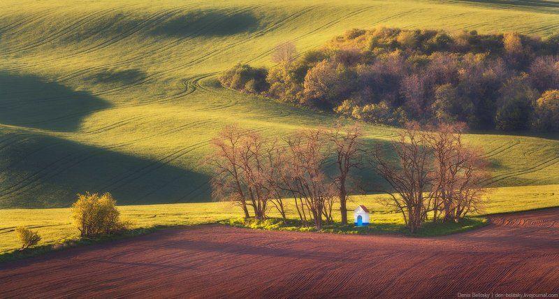 пейзаж, поля, часовня, моравия, чехия, закат, поле, телевик, волны, холмы, дерево Известная часовня в Южной Моравии photo preview