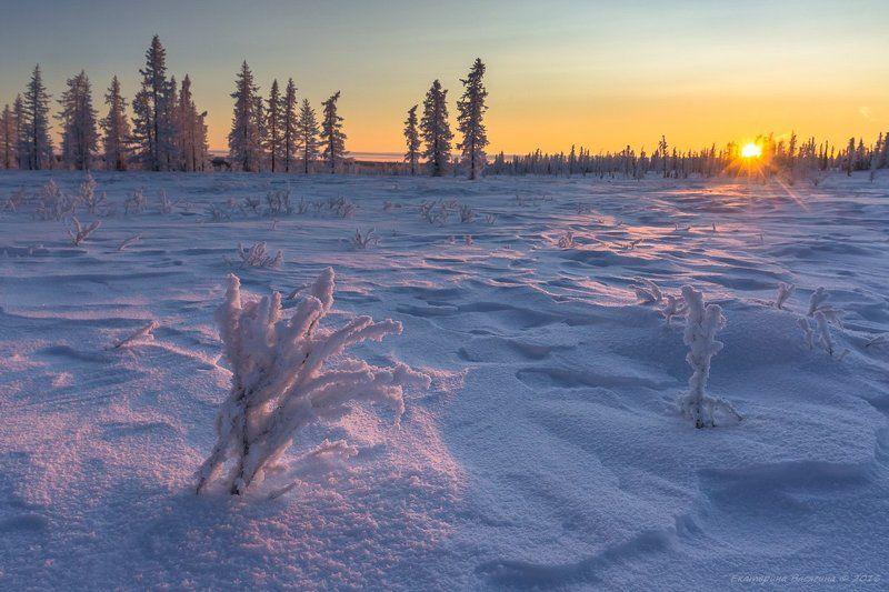 ямал, зима Прощальный взгляд ямальского солнца...photo preview