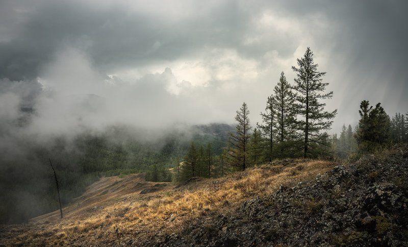 алтай, чуйские, белки, урочище, ештыкёль, горы, непогода, туман, природа, пейзаж, красивый, большой, высокий, облака, хмурые, дождь, панорама Урочище Ештыкёльphoto preview