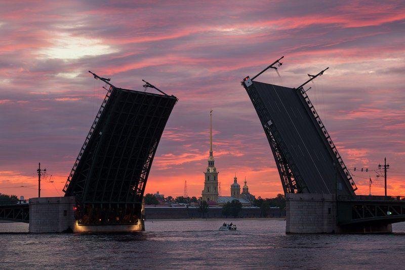 санкт-петербург, питер, дворцовый, мост, нева, белые, ночи Санкт-Петербург: Дворцовый мостphoto preview