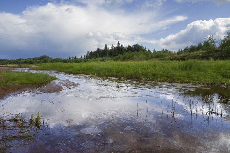 лето ручей болото облака трава берег Болотный ручей после дождяphoto preview