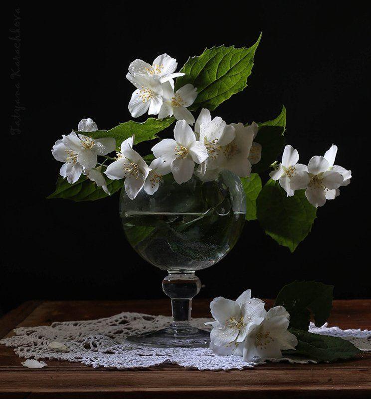 Цветы, Чуьушник Маленькие букетики с чубушникомphoto preview