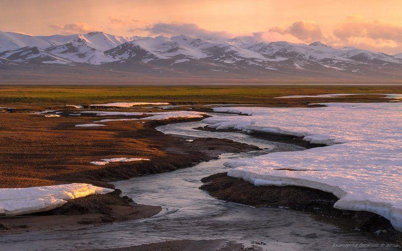 киргизия, май Киргизское высокогорье...photo preview