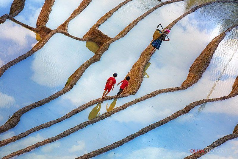 #quanphoto,#landscape,#reflections,#clouds,#surface,#ethnic_people,#children,#terraces,#paddies,#farmland,#agriculture,#mucangchai,#yenbai,#vietnam Oblique Afternoonphoto preview