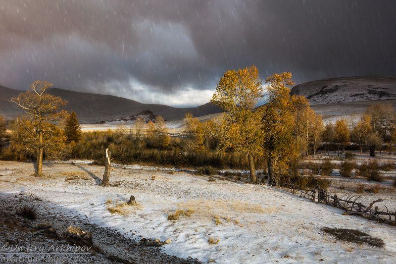 Непогода в Чуйской степиphoto preview