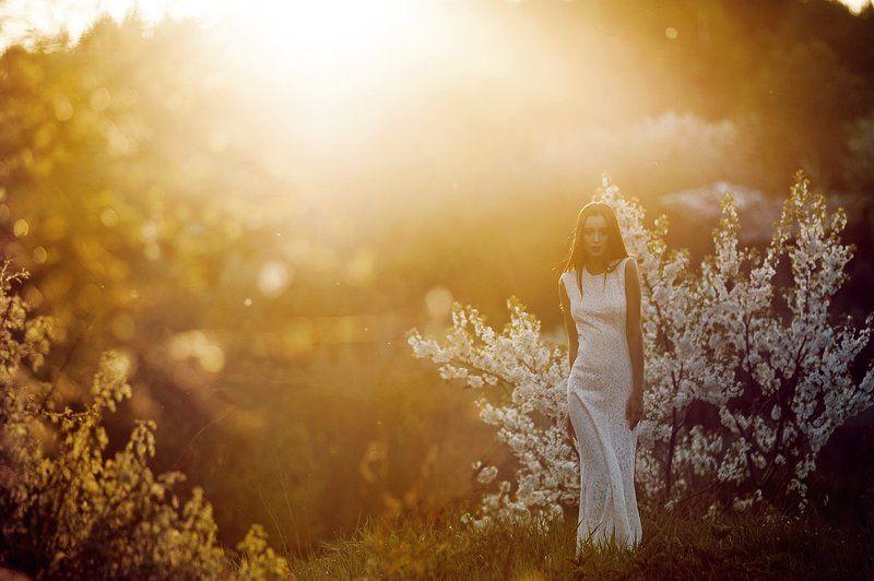 180mm, 85, 85 1.4, 85mm, Helios, Nikkor, Nikkor 180mm, Nikkor 85, Nikon d700 цветы закатаphoto preview