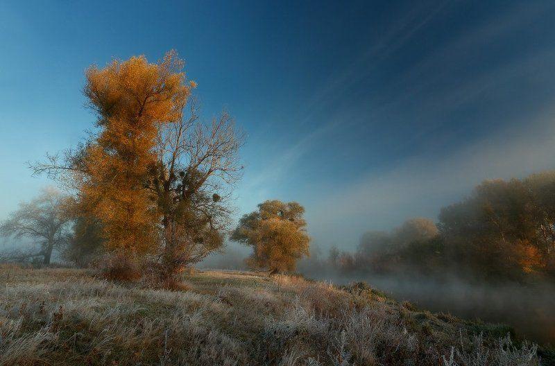 Про утро морозное.photo preview