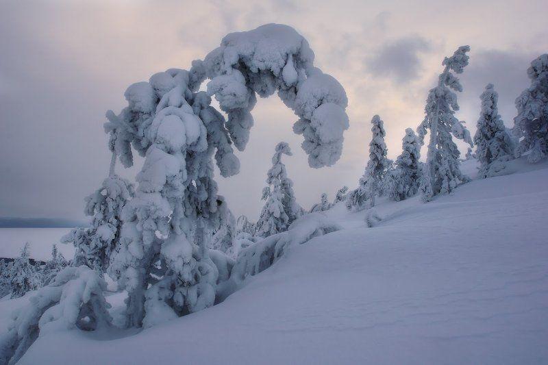 Заполярье, Кандалакша, Кольский полуостров Шествие призраковphoto preview
