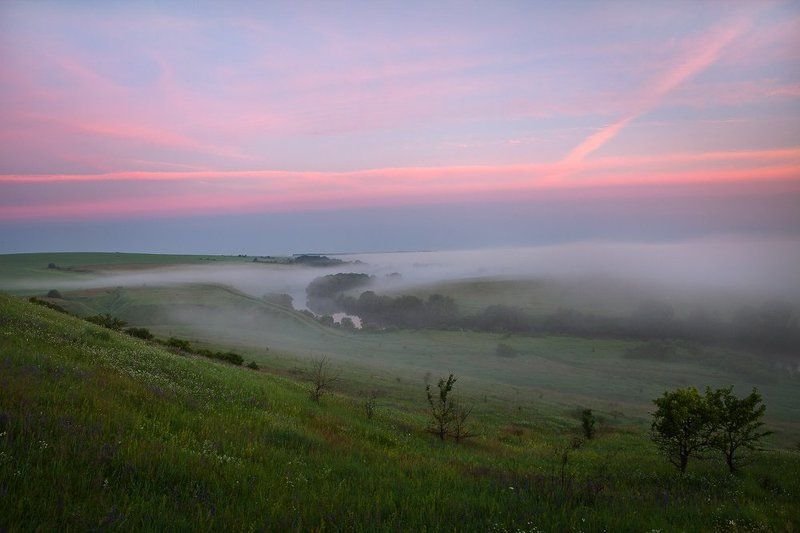 Красивая Меча июньским утром.photo preview