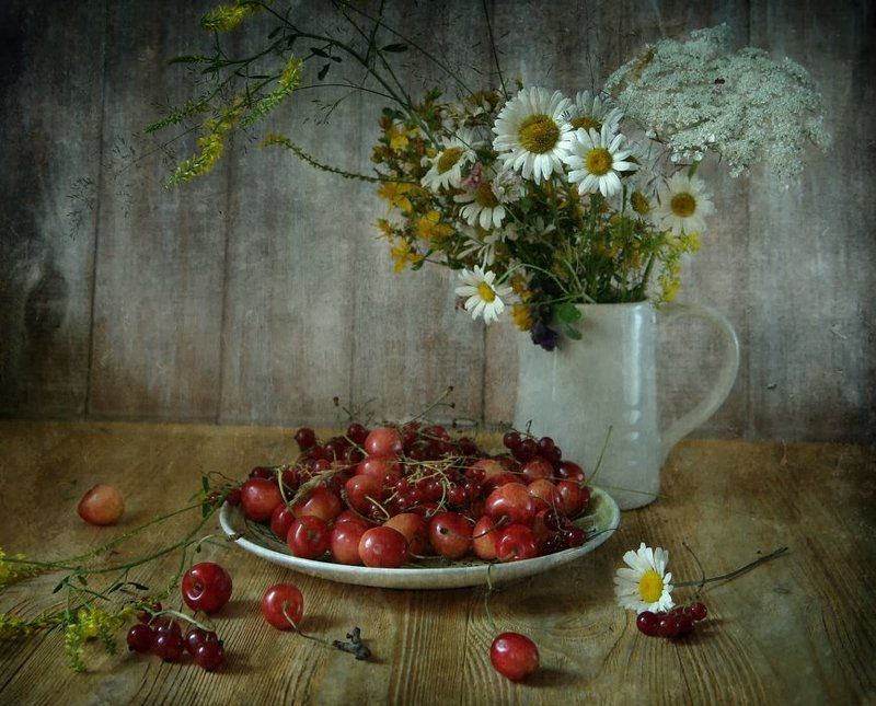 вишневые ромашкиphoto preview