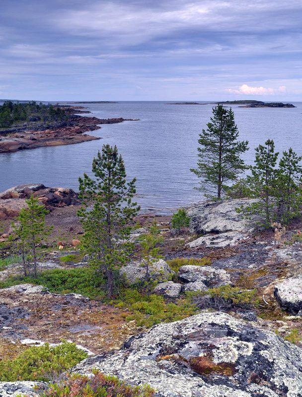 Белое море, июнь.photo preview