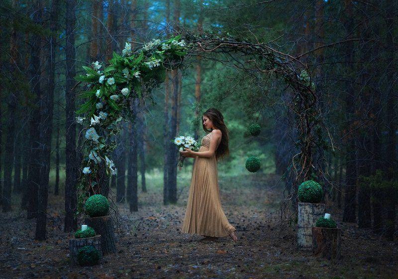 Сказки старого лесаphoto preview