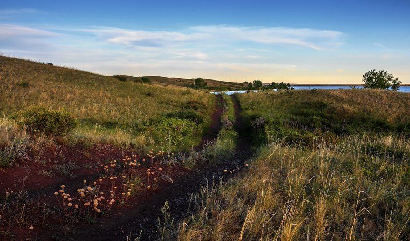Дорога к озеруphoto preview