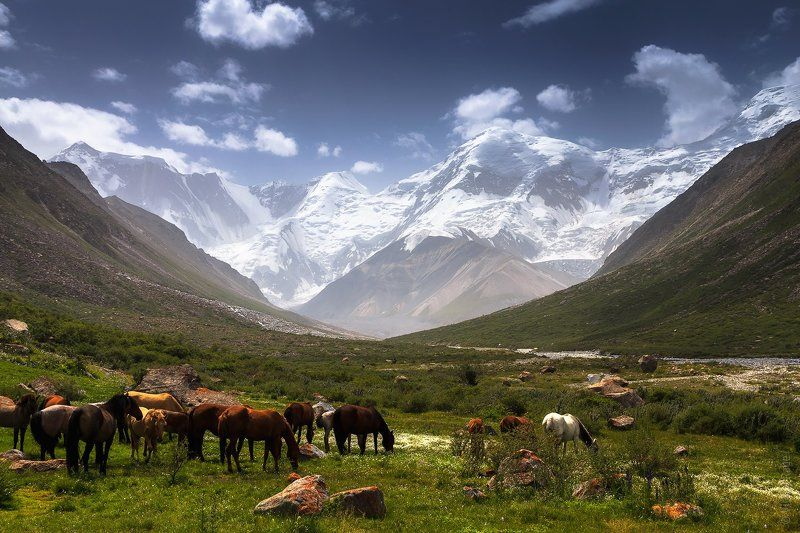 казахстан Центральный Тянь-Шань, Высотаphoto preview