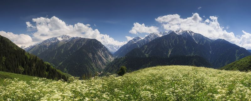 казахстан, горы, лето Малые горы Талгараphoto preview