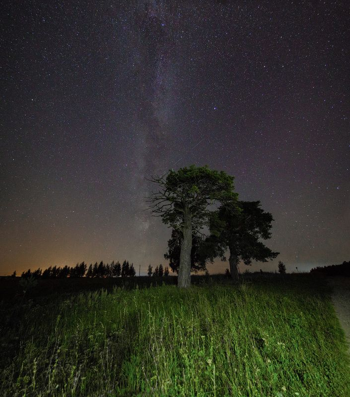 Млечный путьphoto preview