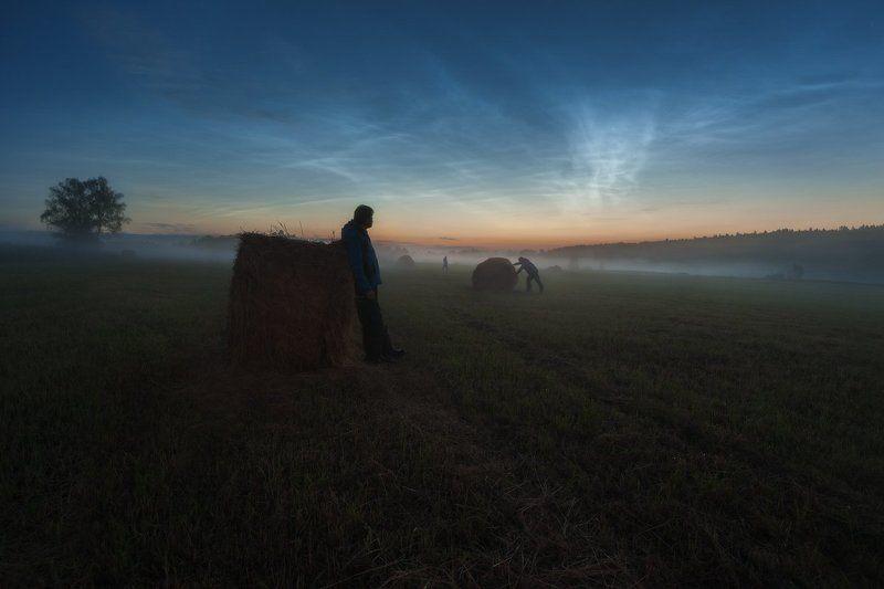 серебристые облака, белые ночи, июнь, спасс косицы, деревня Наблюдательphoto preview