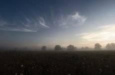 В тумане августа