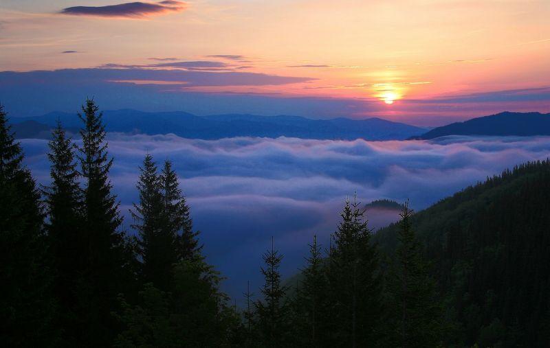 Утро в долине тумановphoto preview