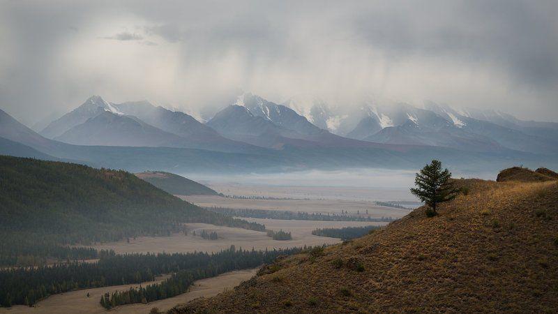 Алтай, Большой, Высокий, Горы, Красивая, Курайская степь, Непогода, Облака, Пейзаж, Природа, Северо-чуйский, Сибирь, Степь, Туман, Утро Непогодаphoto preview