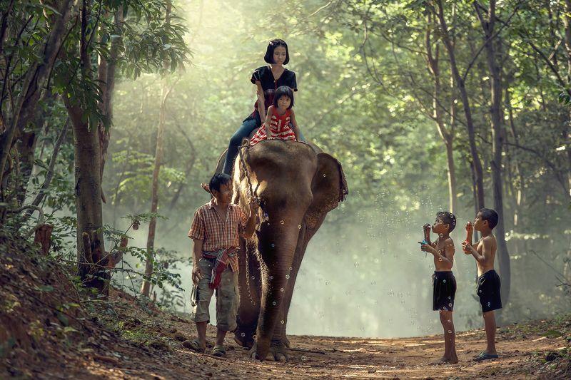 elephant,family,children,girl,boy,life,asia,people, Familyphoto preview