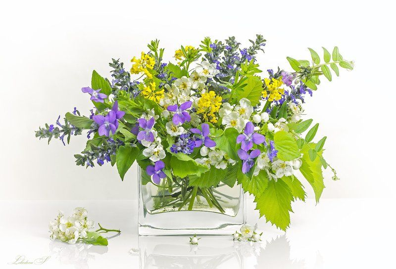 цветы,букет,ваза,натюрморт,одуванчики,клевер,пижма,черёмуха Цветочнаяphoto preview