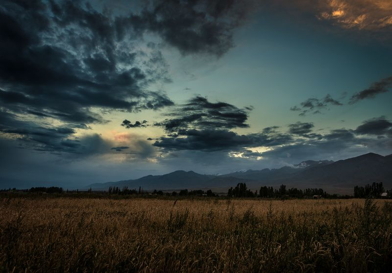 Иссык-Кульская степьphoto preview