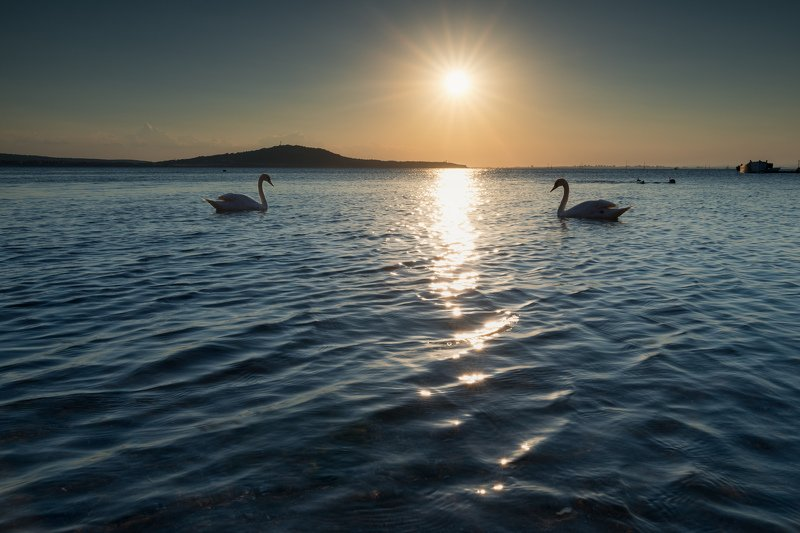 Beach, Beautiful, Boat, Clouds, Island, Pier, Seascape, Sky, Summer, Sun, Sun beams, Sun rays, Sunlight, Sunset, Swan, Water, Waves Закат для двоихphoto preview