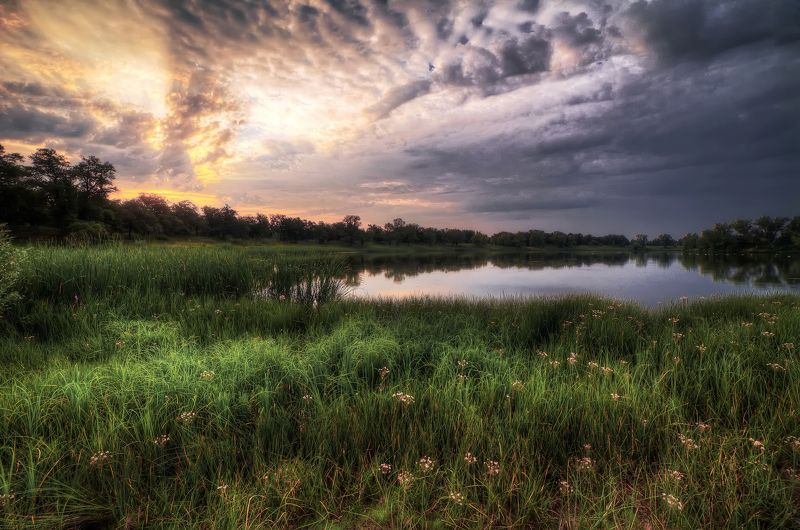 #blue, #green, #morning, #russia, #sky, #sun Раннее утроphoto preview