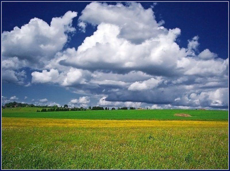 пейзаж,небо,поле,удмуртия Цветущий июньphoto preview