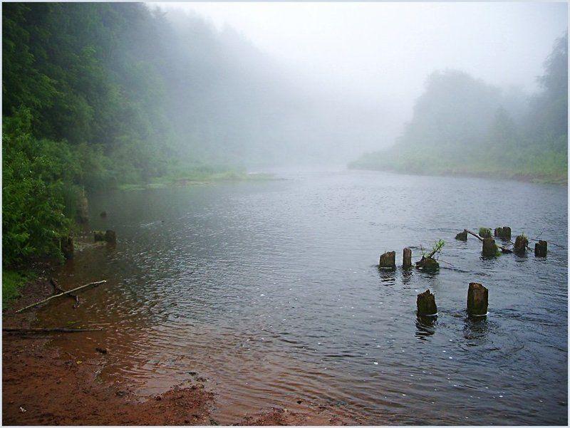 пейзаж,туман,река,лес Ранее утро туманного дняphoto preview