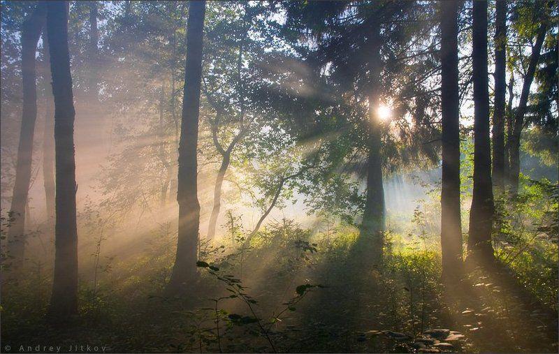 Осязая свет..photo preview
