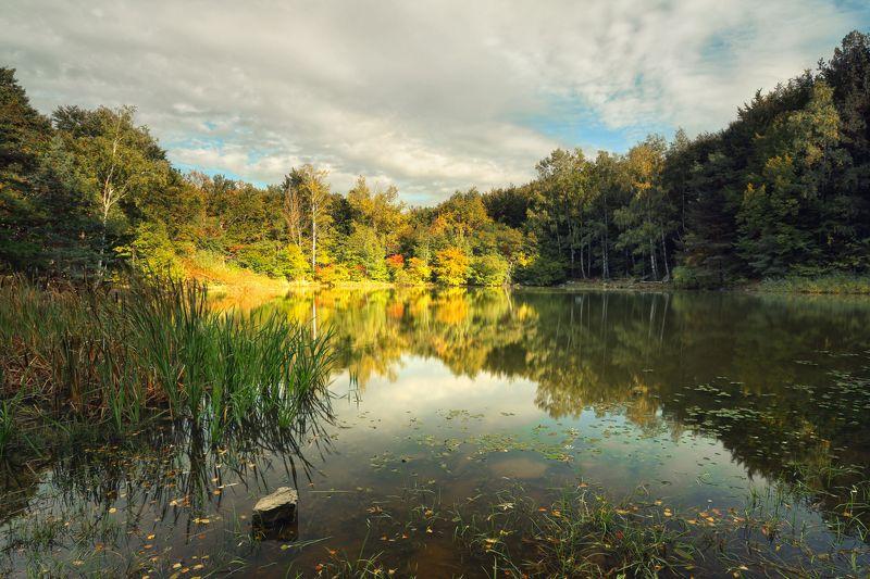 Осень (по Шишкину)photo preview