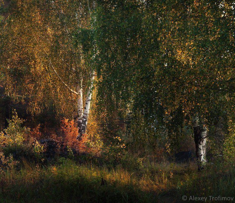 Ангара, Осень пейзаж, Сибирь Завтра наступила осень...photo preview