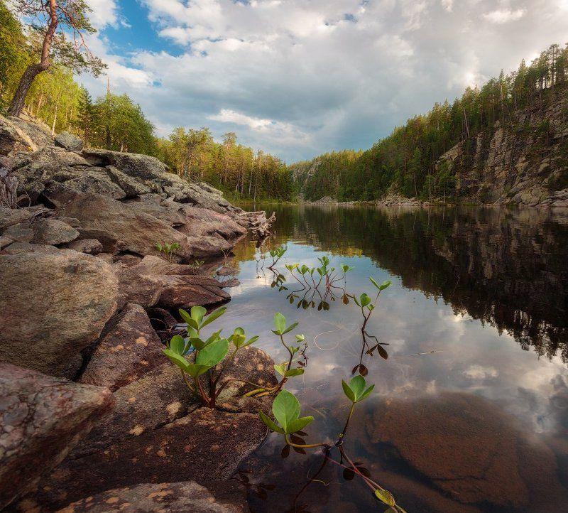 Карелия, панорама, вечер, озеро, лето Карельский вечерphoto preview