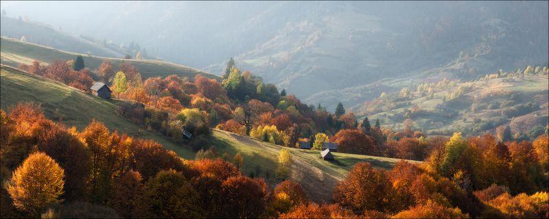 карпаты: закарпатье, горы, осень, свет, пейзаж, синевир, межгорье, украина, утро, вечер, свет, ясиня, лазещина Осень в Закарпатьеphoto preview