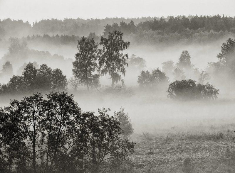 Когда туман сильнее солнца...photo preview
