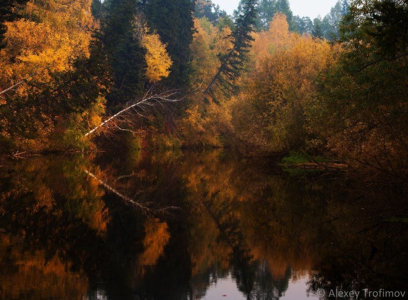 Alexey trofimov, Autumn, Trofimov photo, Осень, Пейзаж Палитра осениphoto preview