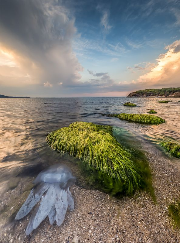 sunset, jellyfish, rock, sea, seascape, lamdscape The end of the summerphoto preview