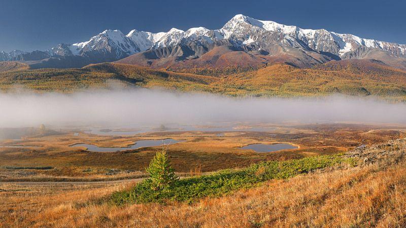 Алтайские зарисовки Iphoto preview