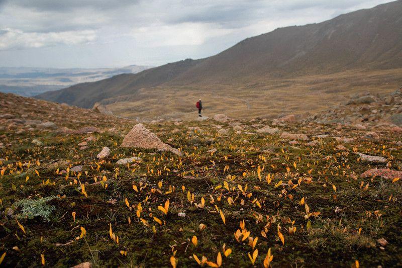 Перевал Айдарыс и Казачьи озера : Казахстанphoto preview
