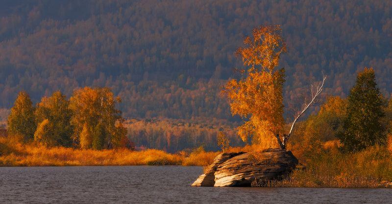 аргази, золотая осень, озеро, осень Закат в золотом заливеphoto preview