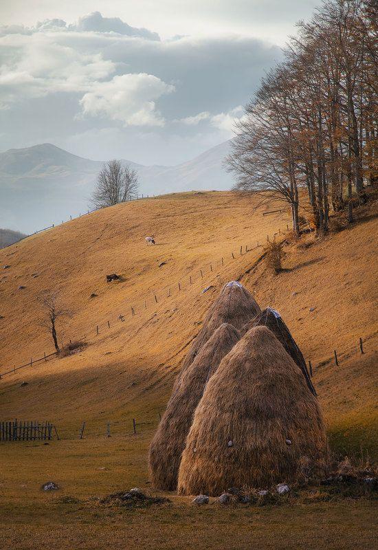 Осенний уют в Черногорииphoto preview