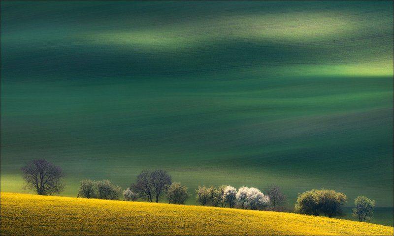 Чехия, Южная Моравия, Czech, South Moravian, весна, линии, формы, свет Моравский сюжетphoto preview
